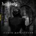definition_faded-reflection_prorocker